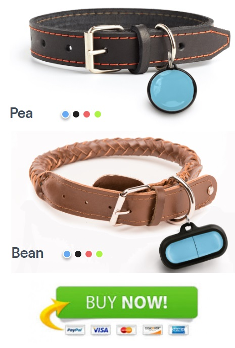 Poof pet activity tracker